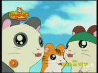 Hamtaro 3 version 9 secondes