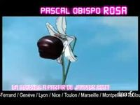 Pascal Obispo : Album + 1980 Version 21 secondes
