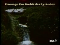 COLLECTIVE DU FROMAGE PUR BREBIS DES PYRENEES OSSAU-IRATY : FROMAGE DE BREBIS