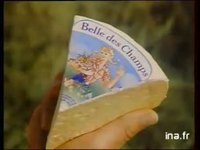 BELLE DES CHAMPS : FROMAGE